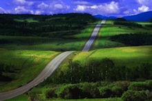 Road in Rolling Hills