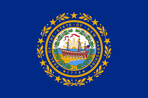 State of New Hampshire Official Flag